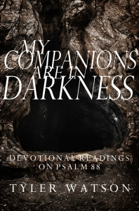 My Companions are in Darkness Cover